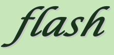 COISPFlash