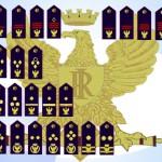 distintivi di qualifica POLIZIA DI STATO