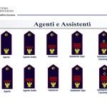 distintivi di qualifica POLIZIA DI STATO - AGENTI ASSISTENTI